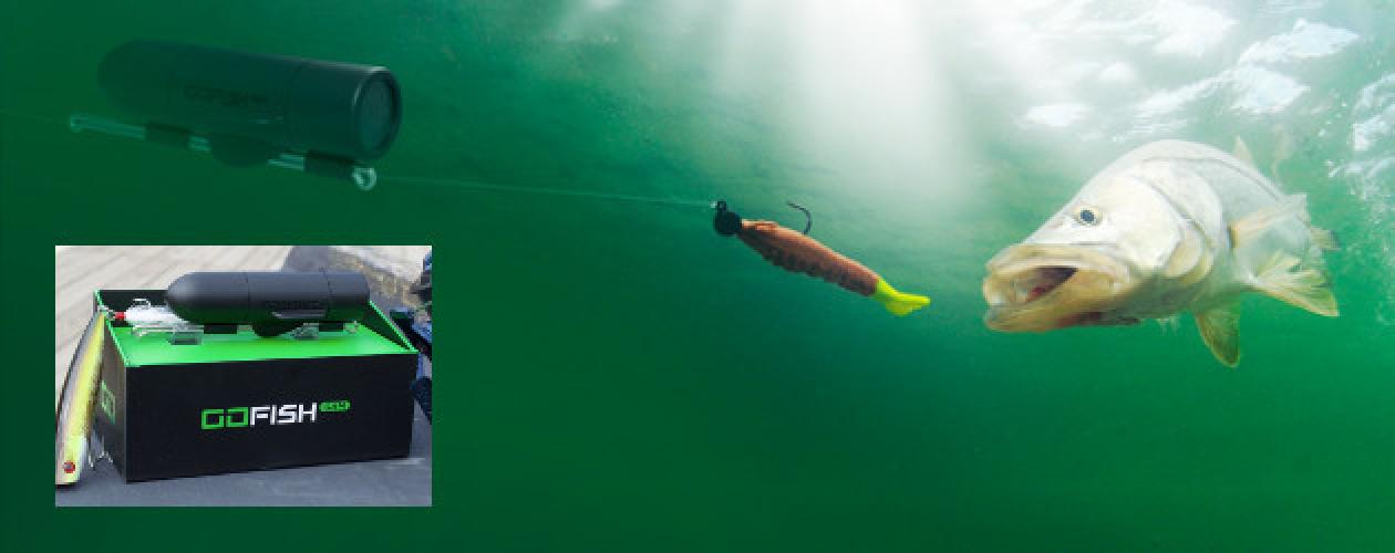 https://www.ragusanews.com//immagini_articoli/05-11-2018/telecamera-subacquea-andare-pesca-500.png