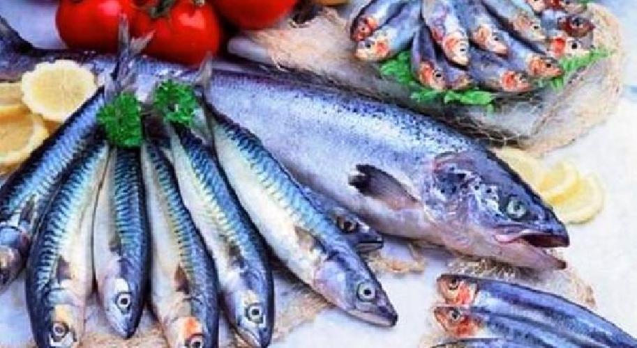 https://www.ragusanews.com//immagini_articoli/05-12-2015/show-cooking-di-pesce-a-portopalo-500.jpg