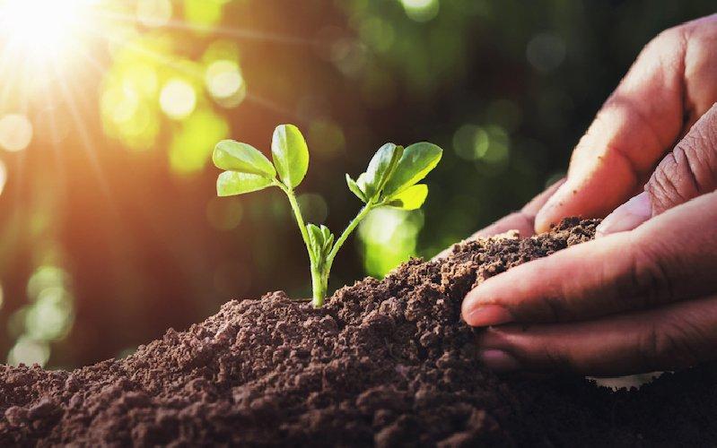 https://www.ragusanews.com//immagini_articoli/06-02-2020/agricoltura-sostenibile-se-ne-parla-a-ispica-500.jpg