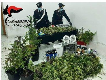https://www.ragusanews.com//immagini_articoli/06-03-2021/una-piantagione-di-marijuana-nascosta-in-una-serra-a-comiso-280.jpg