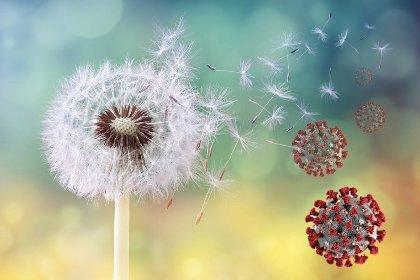https://www.ragusanews.com//immagini_articoli/06-04-2021/allergie-primaverili-e-coronavirus-come-distinguere-i-sintomi-280.jpg