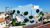 https://www.ragusanews.com//immagini_articoli/06-06-2019/a-punta-secca-un-murales-al-femminile-omaggia-le-api-100.jpg