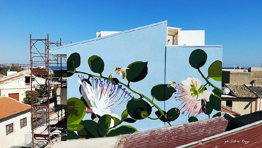 https://www.ragusanews.com//immagini_articoli/06-06-2019/a-punta-secca-un-murales-al-femminile-omaggia-le-api-500.jpg