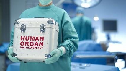 https://www.ragusanews.com//immagini_articoli/06-06-2020/giovane-dona-cuore-polmoni-fegato-reni-e-cornee-240.jpg