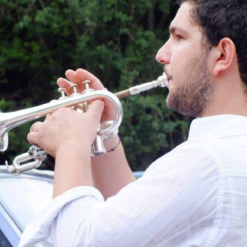 https://www.ragusanews.com//immagini_articoli/06-08-2018/chiaramonte-linternational-music-masterclass-tromba-500.jpg