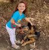 https://www.ragusanews.com//immagini_articoli/06-09-2021/monterosso-dice-no-alla-violenza-sugli-animali-il-cane-dalla-d-urso-video-100.jpg