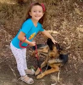 https://www.ragusanews.com//immagini_articoli/06-09-2021/monterosso-dice-no-alla-violenza-sugli-animali-il-cane-dalla-d-urso-video-280.jpg