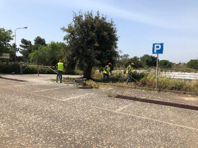https://www.ragusanews.com//immagini_articoli/06-12-2018/volontariato-migranti-seminario-ragusa-500.jpg