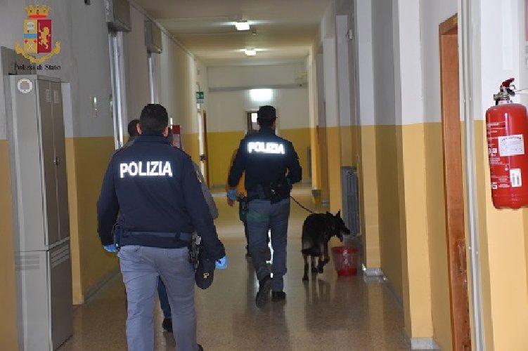 https://www.ragusanews.com//immagini_articoli/06-12-2019/cani-antidroga-in-una-scuola-di-ragusa-500.jpg