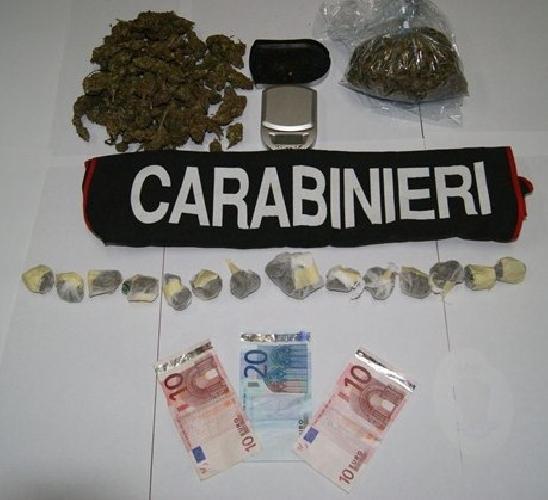http://www.ragusanews.com//immagini_articoli/07-04-2014/prosegue-contrasto-alla-marijuana-2-arresti-500.jpg