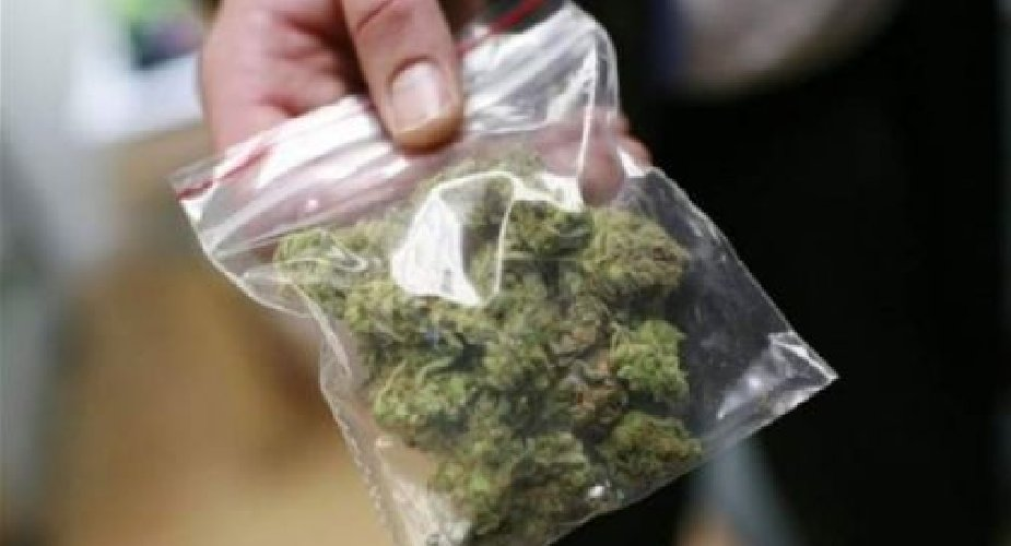 https://www.ragusanews.com//immagini_articoli/07-04-2018/ragusa-spaccio-marijuana-arresti-500.jpg