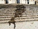 https://www.ragusanews.com//immagini_articoli/07-04-2018/vandali-modica-olio-frittura-lungo-scalinata-giovanni-100.jpg