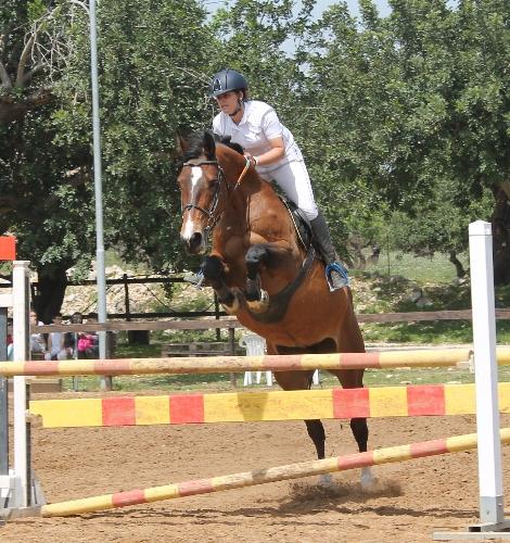 http://www.ragusanews.com//immagini_articoli/07-05-2015/equitazione-bene-sharon-figura-500.jpg