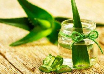 https://www.ragusanews.com//immagini_articoli/07-05-2019/laloe-e-i-benefici-dellutilizzo-dieta-detox-240.jpg
