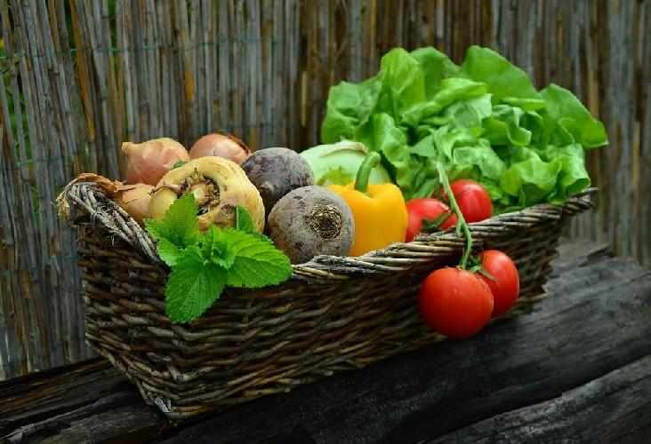https://www.ragusanews.com//immagini_articoli/07-05-2020/verdure-non-amidacee-per-dimagrire-quali-sono-500.jpg