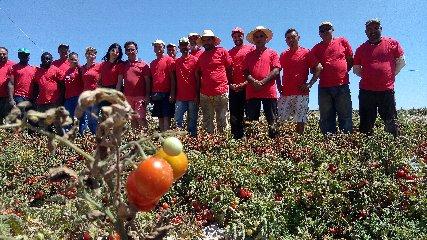 https://www.ragusanews.com//immagini_articoli/07-07-2018/ispica-agriblea-maglietta-rossa-fermare-emorragia-umanita-240.jpg