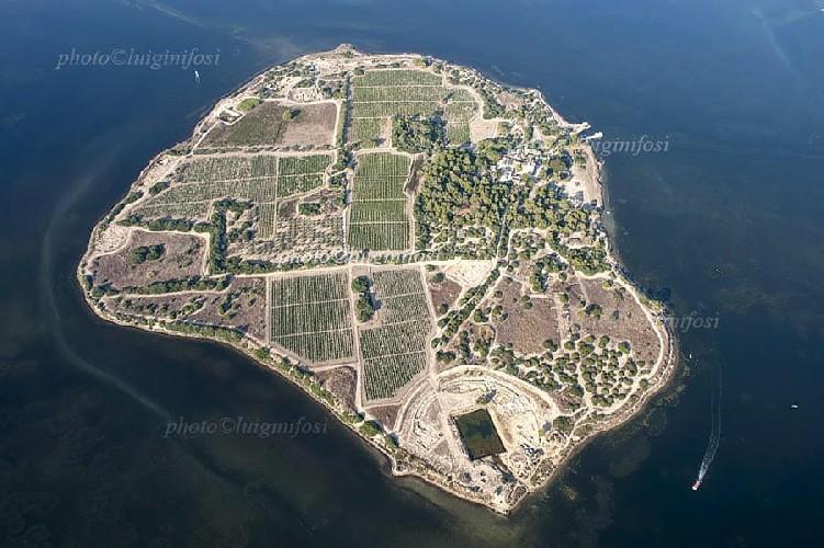 https://www.ragusanews.com//immagini_articoli/07-07-2020/l-isola-mai-vista-agli-aromi-500.jpg