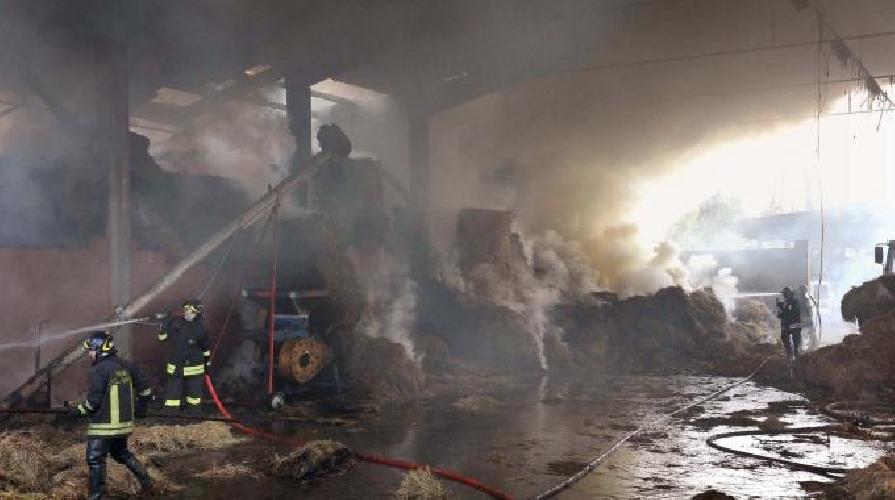 http://www.ragusanews.com//immagini_articoli/07-08-2014/scoppia-incendio-in-capannone-di-rotoballe-di-fieno-500.jpg