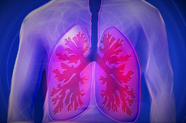 https://www.ragusanews.com//immagini_articoli/07-09-2020/polmoni-in-salute-ecco-cosa-mangiare-500.jpg