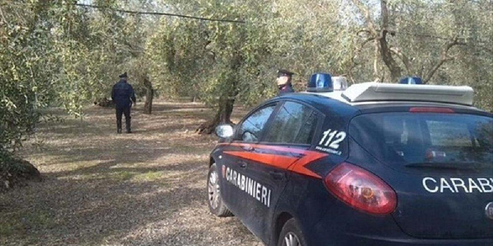https://www.ragusanews.com//immagini_articoli/07-11-2019/ladri-campagne-arresti-dei-carabinieri-500.jpg