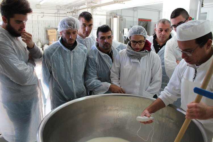 http://www.ragusanews.com//immagini_articoli/07-12-2017/ragusa-concluso-corso-mozzarella-organizzato-corfilac-500.jpg
