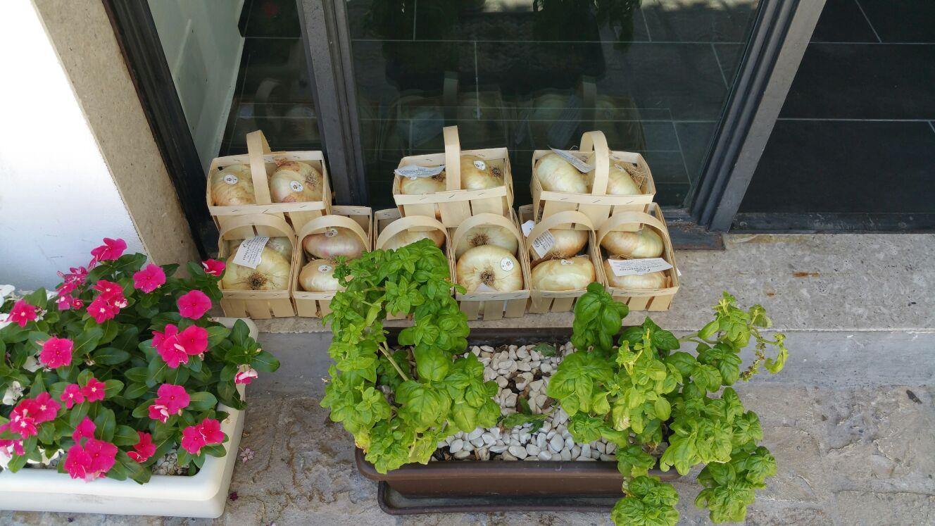 https://www.ragusanews.com//immagini_articoli/08-07-2016/1468003579-1-lo-street-food-in-via-mormina-penna.jpg