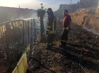http://www.ragusanews.com//immagini_articoli/08-07-2017/incendiata-serra-maurizio-ciaculli-240.jpg
