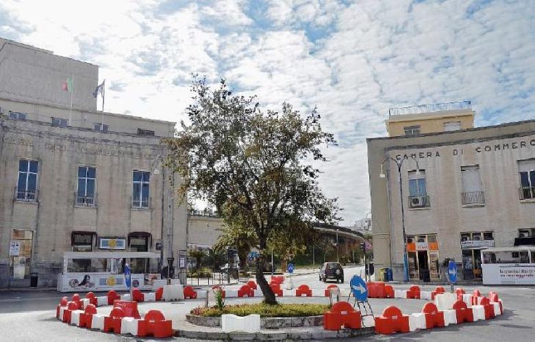 http://www.ragusanews.com//immagini_articoli/08-07-2017/piazza-libert-mecenate-riportato-casa-quercia-500.jpg
