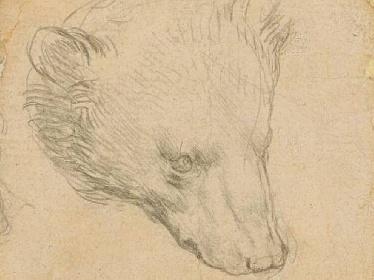 https://www.ragusanews.com//immagini_articoli/08-07-2021/testa-di-orso-disegnata-da-leonardo-all-asta-vale-14-milioni-di-euro-280.jpg