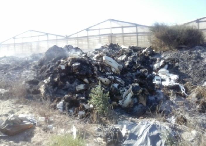https://www.ragusanews.com//immagini_articoli/08-08-2014/fumarole-un-denunciato-ad-acate-500.jpg