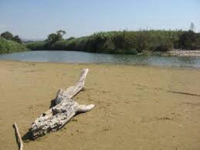 https://www.ragusanews.com//immagini_articoli/08-08-2019/irminio-fermate-la-perdita-di-biodiversita-500.jpg