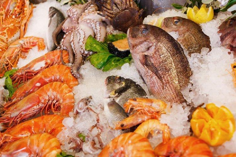 https://www.ragusanews.com//immagini_articoli/08-09-2019/dieta-pescetariana-la-dieta-vegetariana-futuro-500.jpg