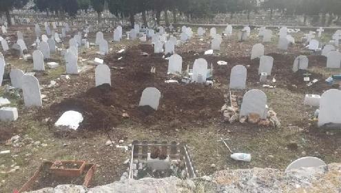 https://www.ragusanews.com//immagini_articoli/08-10-2021/1633703348-cinghiali-tra-le-lapidi-l-ultimo-oltraggio-ai-morti-dei-rotoli-foto-1-280.jpg