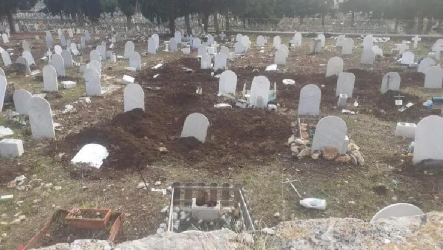 https://www.ragusanews.com//immagini_articoli/08-10-2021/1633703348-cinghiali-tra-le-lapidi-l-ultimo-oltraggio-ai-morti-dei-rotoli-foto-1-500.jpg