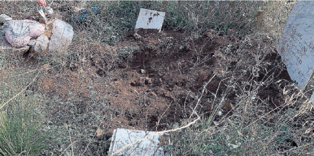 https://www.ragusanews.com//immagini_articoli/08-10-2021/1633703349-cinghiali-tra-le-lapidi-l-ultimo-oltraggio-ai-morti-dei-rotoli-foto-2-500.jpg