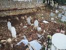 https://www.ragusanews.com//immagini_articoli/08-10-2021/cinghiali-tra-le-lapidi-l-ultimo-oltraggio-ai-morti-dei-rotoli-foto-100.jpg