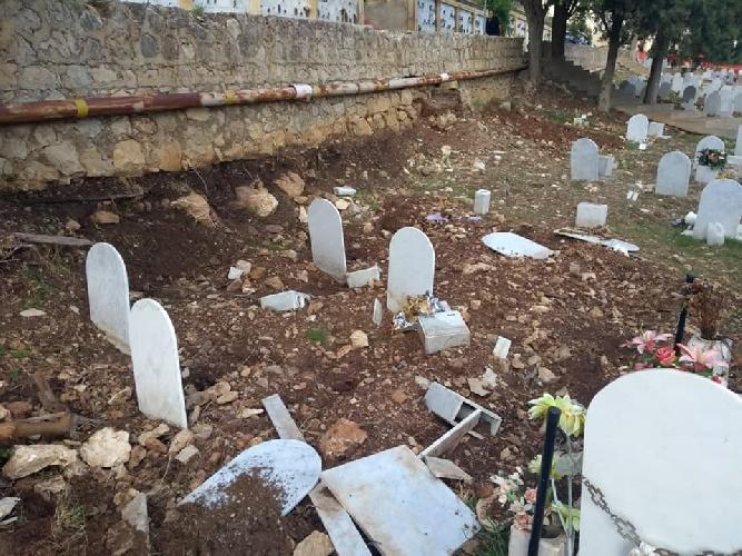 https://www.ragusanews.com//immagini_articoli/08-10-2021/cinghiali-tra-le-lapidi-l-ultimo-oltraggio-ai-morti-dei-rotoli-foto-500.jpg