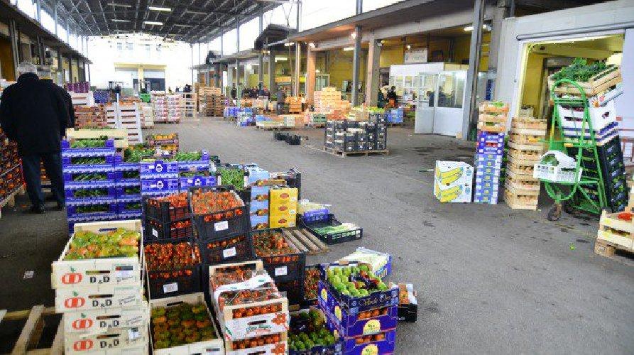 https://www.ragusanews.com//immagini_articoli/09-01-2019/pubblicazione-bando-mercato-ortofrutticolo-500.jpg