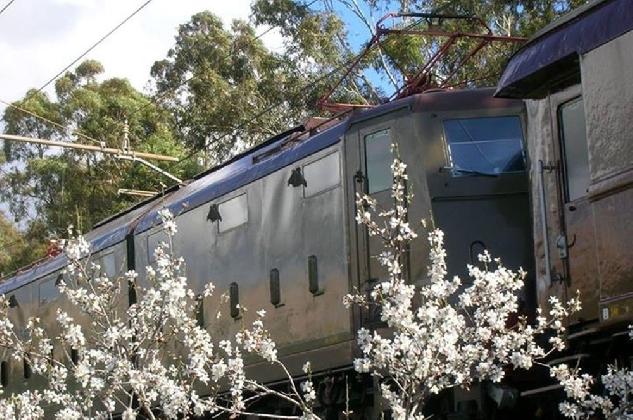 https://www.ragusanews.com//immagini_articoli/09-02-2017/treno-mandorlo-fiore-420.jpg