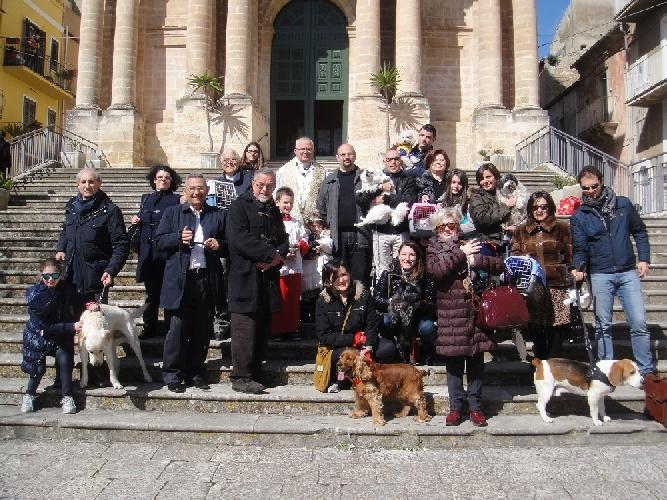 http://www.ragusanews.com//immagini_articoli/09-03-2014/benedizione-degli-animali-domestici-per-la-festa-di-san-giuseppe-500.jpg