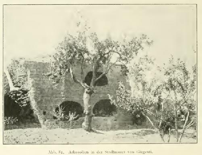 https://www.ragusanews.com//immagini_articoli/09-04-2017/joseph-fuhrer-archeologo-cava-ispica-500.jpg