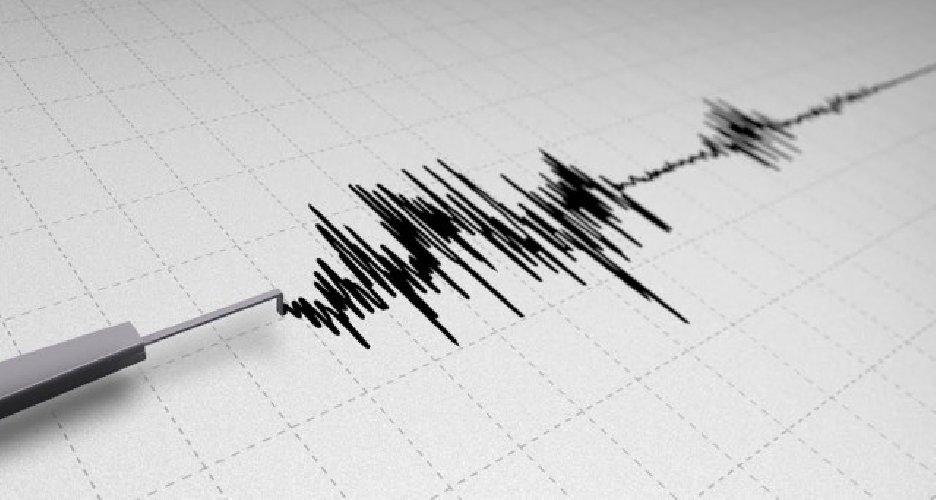 https://www.ragusanews.com//immagini_articoli/09-05-2018/prevenzione-terremoti-ragusa-avvale-aiuto-ingv-500.jpg