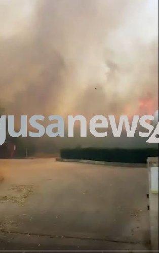 https://www.ragusanews.com//immagini_articoli/09-06-2018/incendio-kamarina-visto-club-video-500.jpg