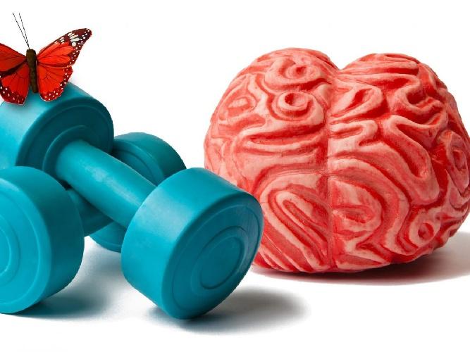 https://www.ragusanews.com//immagini_articoli/09-06-2021/alzheimer-dieta-e-attivita-fisica-proteggono-chi-e-geneticamente-a-rischio-500.jpg
