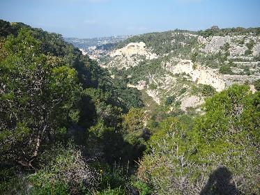 https://www.ragusanews.com//immagini_articoli/09-06-2021/scicli-escursione-per-le-cave-280.jpg