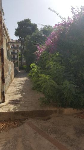 https://www.ragusanews.com//immagini_articoli/09-07-2021/i-mancati-lavori-di-ripristino-al-parco-verde-di-via-risorgimento-a-modica-500.jpg