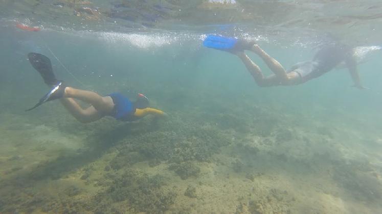 http://www.ragusanews.com//immagini_articoli/09-08-2016/un-mare-d-ambiente-corso-di-snorkeling-420.jpg
