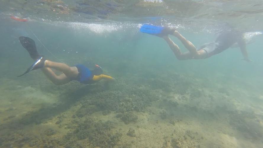 http://www.ragusanews.com//immagini_articoli/09-08-2016/un-mare-d-ambiente-corso-di-snorkeling-500.jpg