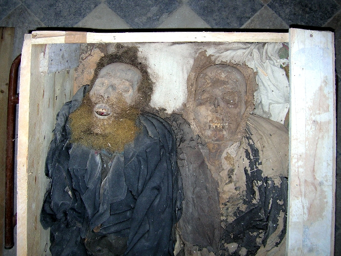 https://www.ragusanews.com//immagini_articoli/09-08-2017/passeggiata-scoprir-mummie-500.jpg