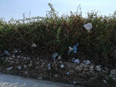 https://www.ragusanews.com//immagini_articoli/09-09-2021/1631197999-la-civilta-non-e-di-tutti-a-ragusa-e-provincia-1-280.jpg